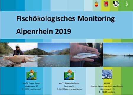 Beinahe fischleerer Alpenrhein